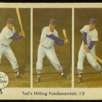 Ted Williams - fundamentals