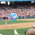 baseball fans 2